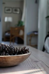 bowl of pinecones