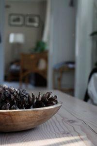 bowl of pinecones