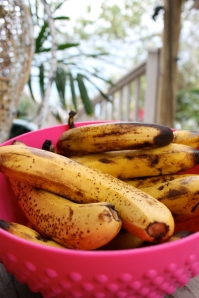 bananas in bowl