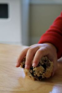 muffin thief