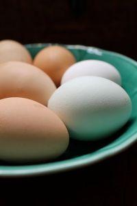 1.fritatta eggs