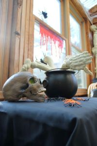 skull, spiders and cauldron of bones