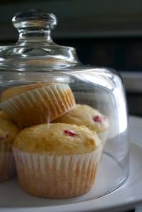 muffins under glass