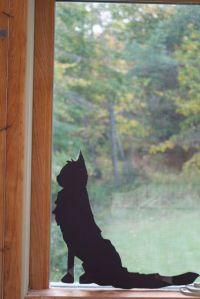 cat siloette
