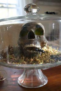 skull under cover