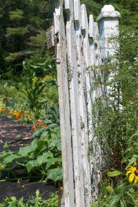 1.garden gate